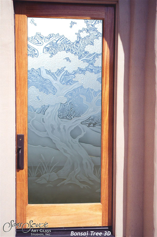 Frosted glass entry doors sans soucie art glass for Exterior entry doors with glass