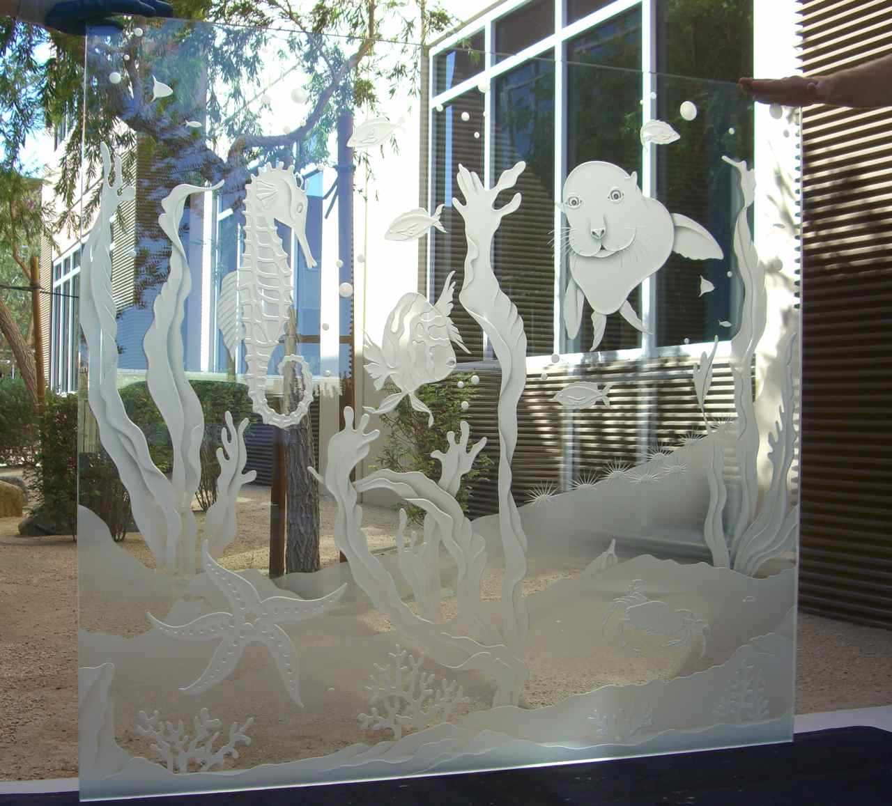 glass partitions frosted glass seahorse
