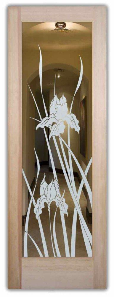 Glass Front Doors Etched Iris Positive