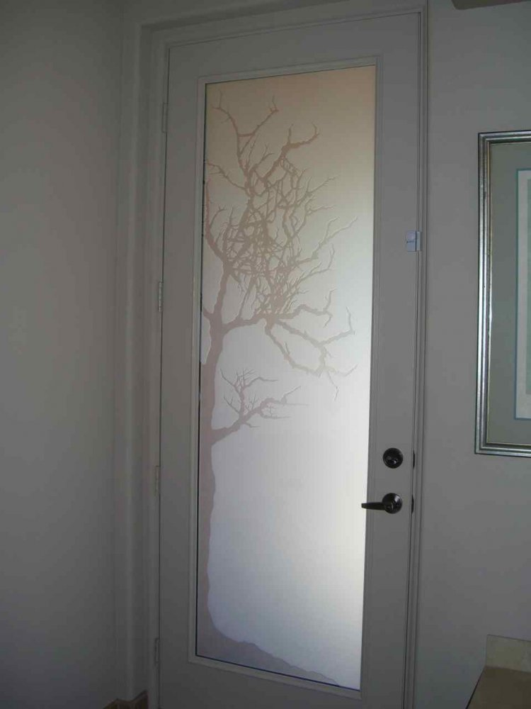 Etched door glass sans soucie art glass for Frosted glass window bathroom