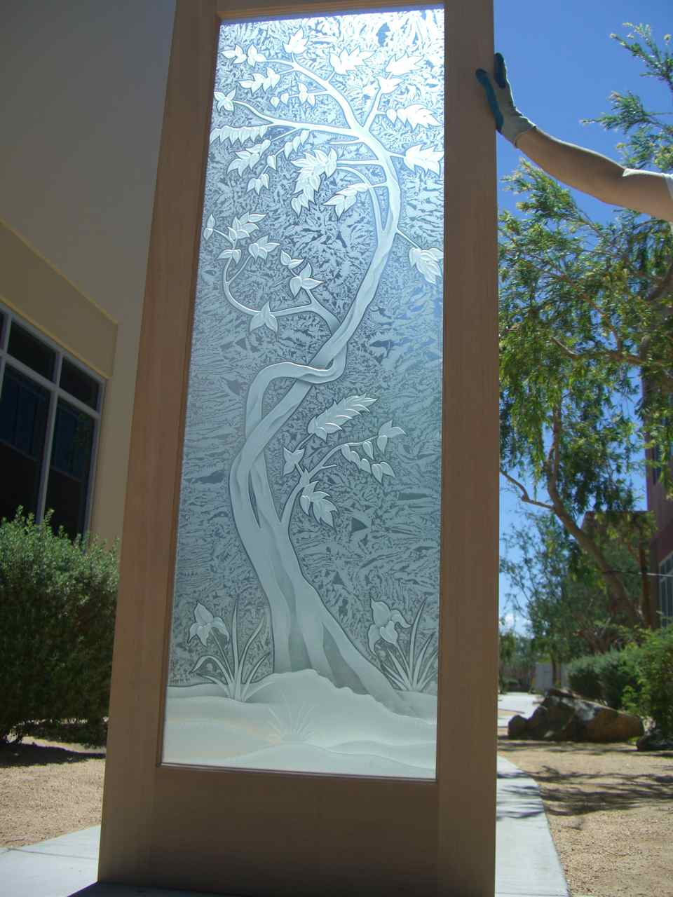 Etched glass doors privacy glass door inserts bamboo pictures to pin - Glass Doors Frosted Tree Priv Sapling Door Private Sapling 3d Door