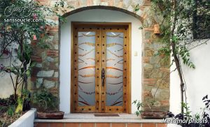 interior glass doors trails 3d painted sans soucie