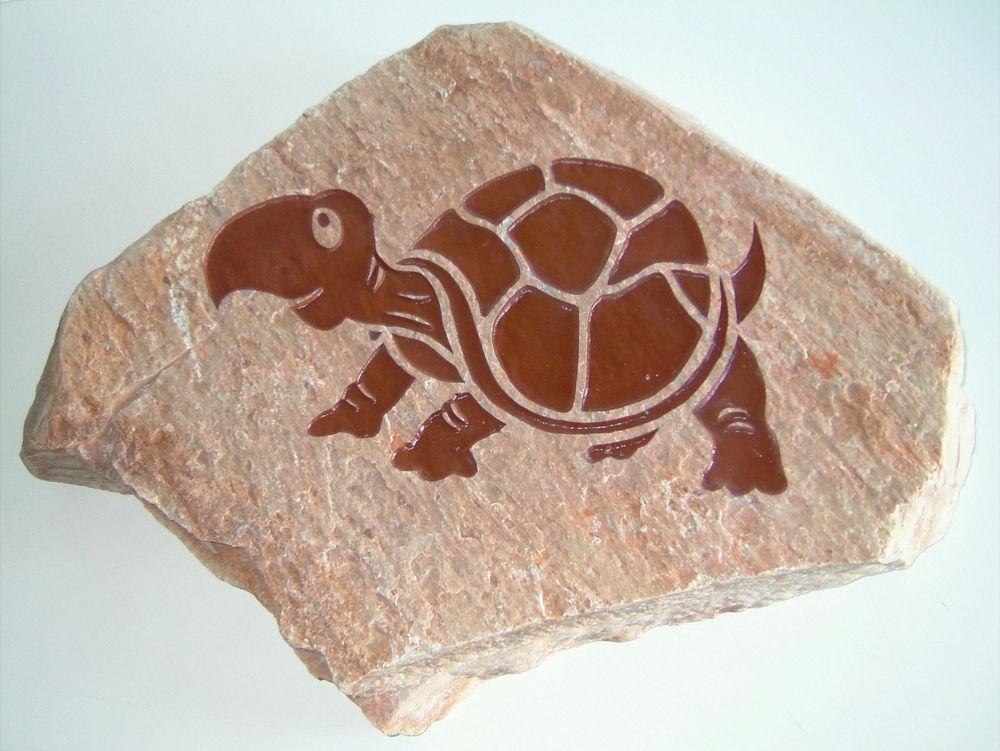 Glass Signs Ali's Turtle Sans Soucie