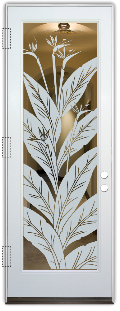 interior doors with glass etching frosted glass tropical style foliage plants bird of paradise sans soucie
