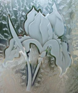etched glass iris flower obscure