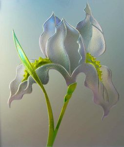 3D painted private glass iris flower