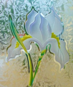 etched glass painted iris flower obscure