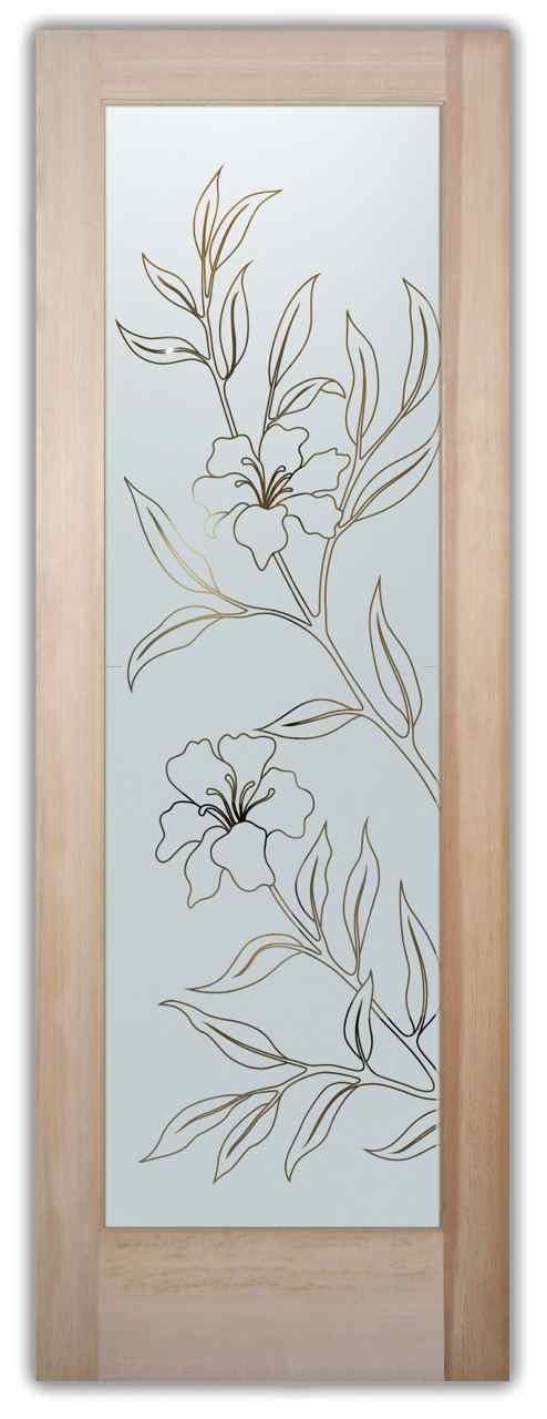 D 02 hibiscus pinst door