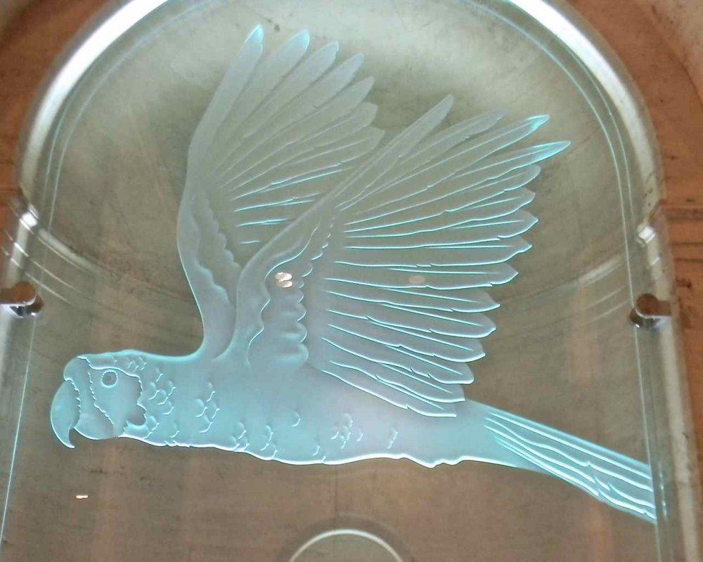 etched glass parrot sans soucie natural history