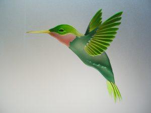Shower Enclosures Glass Etching Wildlife hummingbird Sans Soucie