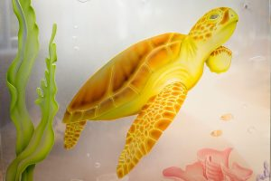 Sans Soucie Glass Door Inserts Etched Glass Tropical sea turtle