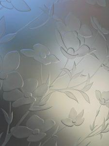 Apple Blossom 3D Private Floral Etched Glass Sans Soucie