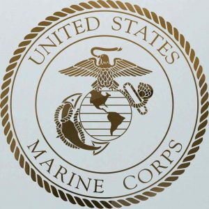 Sans Soucie Door Inserts with Frosted Glass Borders US Marines Seal
