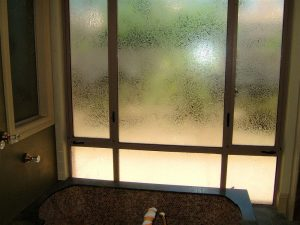 glass window frosted glass traditional style patterns shapes gluechipped privacy sans soucie