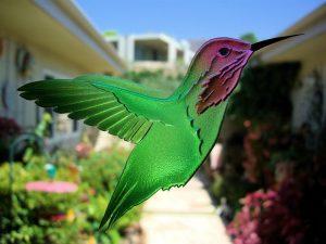 Etched Glass Door Inserts Wildlife Hummingbird Lovers Sans Soucie