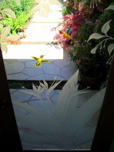 Glass Door Inserts with Etched Wildlife Hummingbird Lovers Sans Soucie