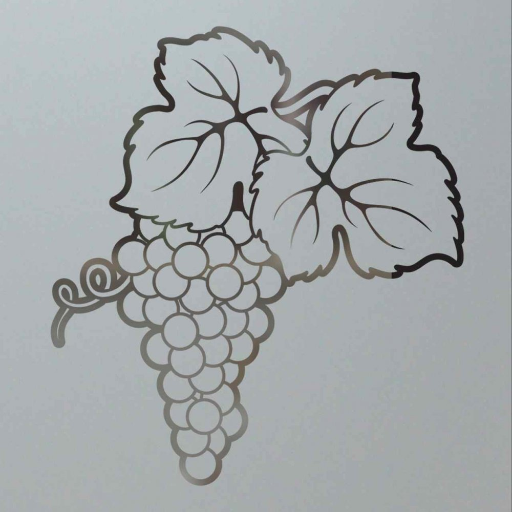 frosted etched glass grape cluster pantry door design sans soucie