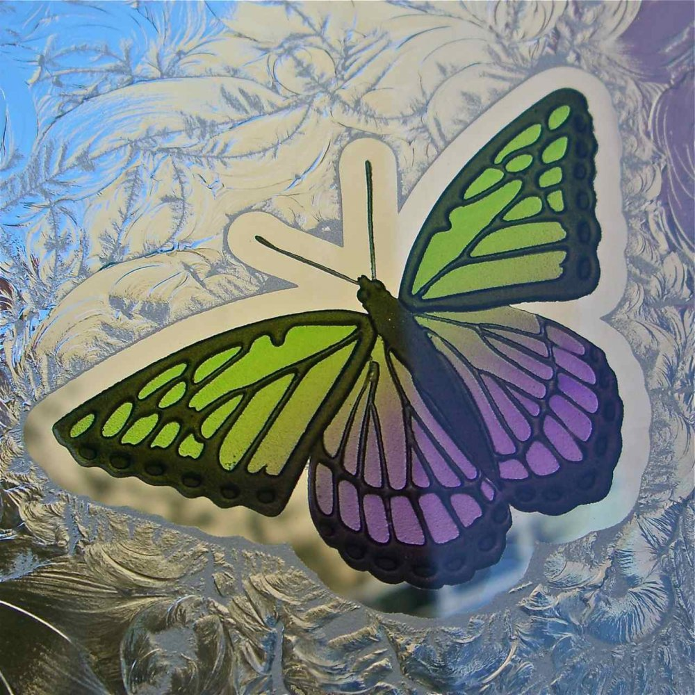 Butterfly Carved And Painted In Glass Decorative Etched
