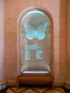 Carved Etched Glass Sculpture Doner Plaques Butterfly by Sans Soucie