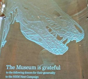 Etched and Carved Glass Sculpture Doner Plaques Dinosaur by Sans Soucie