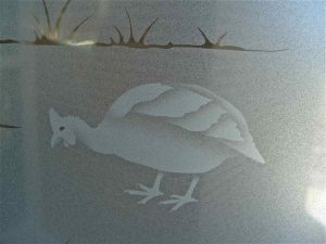 Sans Soucie Door Glass Inserts Etched and Shaded African fowl